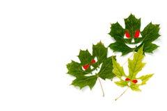 万圣夜假日背景-秋天槭树离开以面孔的形式与红色眼睛 奶油被装载的饼干 安置文本 免版税库存图片