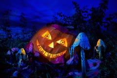万圣夜南瓜在有齿轮的眼睛的庭院里 图库摄影