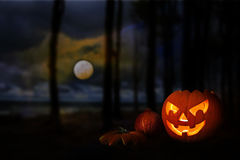 万圣夜南瓜在满月下的一个黑暗的森林里在分类 免版税库存图片