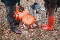 万圣夜启发 仍然秋天生活 南瓜,干燥玫瑰,荚莲属的植物蜜糕 在花瓶 枝杈 先生 并且小姐 免版税库存照片