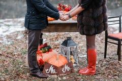 万圣夜启发 仍然秋天生活 南瓜,干燥玫瑰,荚莲属的植物蜜糕 在花瓶 枝杈 先生 并且小姐 库存图片