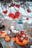 万圣夜启发 仍然秋天生活 南瓜,干燥玫瑰,荚莲属的植物蜜糕 在花瓶 枝杈 在桌上 库存图片