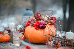 万圣夜启发 仍然秋天生活 南瓜,干燥玫瑰,荚莲属的植物蜜糕 在花瓶 枝杈 在桌上 免版税库存照片