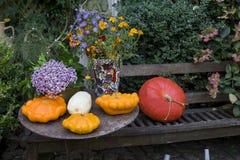 万圣夜在一个庭院里装饰了用各种各样的大小和形状南瓜 库存照片