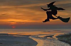 万圣夜在帚柄的巫婆飞行剪影  免版税库存照片