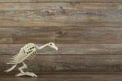 万圣夜在木背景的雕骨骼 免版税库存图片
