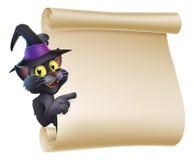 万圣夜巫婆猫纸卷 免版税库存照片