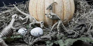 万圣夜恐龙 免版税库存图片