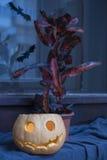 万圣夜有里面一个发光的蜡烛的南瓜灯笼 库存图片