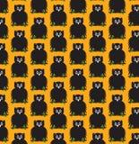万圣夜猫头鹰无缝背景的样式 库存图片