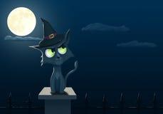 万圣夜猫 库存图片