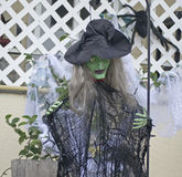 万圣夜的巫婆 免版税库存照片