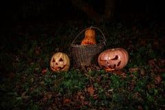 万圣夜的概念 在一个篮子的邪恶的可怕南瓜在 免版税图库摄影