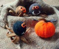 万圣夜背景,手工制造,南瓜,蜘蛛, 10月 图库摄影