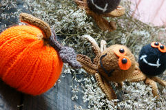 万圣夜背景,手工制造,南瓜,蜘蛛, 10月 免版税库存照片
