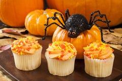 万圣夜蜘蛛用杯形蛋糕和南瓜 库存照片