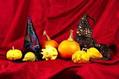 万圣夜静物画用南瓜和巫婆帽子 库存图片