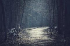 万圣夜风景 有空的路的黑暗的森林 免版税库存照片