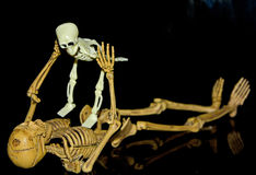万圣夜骨骼展示 库存图片