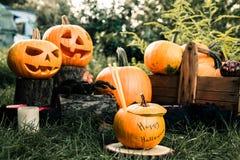 万圣夜鸡尾酒 杰克o灯笼 与微笑的可怕南瓜在蜡烛和蜘蛛附近在绿色森林里,室外 装饰 当事人 免版税库存图片