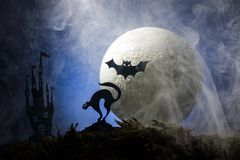 万圣夜,一个帚柄的巫婆在月亮的背景中 免版税库存照片