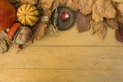 万圣夜:在木桌上的五颜六色的南瓜作为背景 免版税库存图片