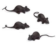 万圣夜-四只玩具老鼠-在白色 免版税库存图片