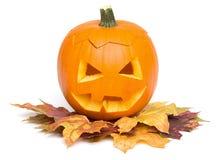 万圣夜-在秋叶的南瓜面孔-在白色 免版税库存照片