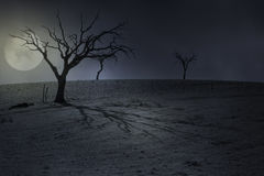 万圣夜满月背景 免版税库存照片