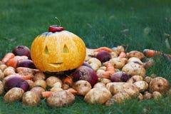 万圣夜滑稽的南瓜用秋天收获土豆,红萝卜,在绿草的甜菜 免版税库存图片