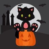 万圣夜黑色小猫坐南瓜 免版税库存图片