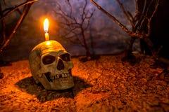 万圣夜头骨在可怕背景的头灯笼 免版税库存图片