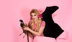 万圣节假日和玩偶 桃红色的疯狂的女孩 万圣节 创造性的想法 禽流感 滑稽的广告 葡萄酒妇女 免版税库存图片
