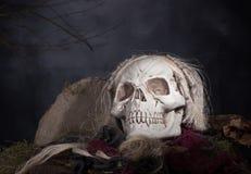 万圣节可怕头骨 免版税图库摄影