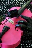 万圣节桃红色中提琴小提琴 库存图片