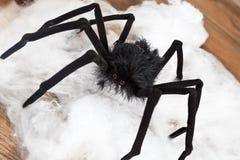 万圣节蜘蛛 免版税库存照片