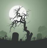 万圣节鬼的停止的结构树在坟园 库存图片