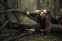 万圣节 伞形毒蕈 一件黑礼服的美丽的女孩在森林里 库存照片