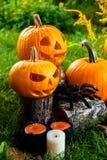 万圣节 杰克o灯笼 与微笑的可怕南瓜在蜡烛和蜘蛛附近在绿色森林里,室外 装饰 免版税库存照片
