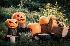 万圣节 杰克o灯笼 与微笑的可怕南瓜在蜡烛和蜘蛛附近在绿色森林里,室外 被定调子的照片 库存照片
