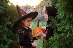 万圣节 代表不祥的要人的两个孩子在灌木掩藏 库存照片