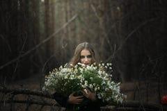 万圣节 领域春黄菊 一件黑礼服的美丽的女孩在森林里 库存图片
