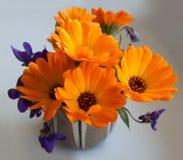 万寿菊和紫罗兰色花束 免版税库存照片