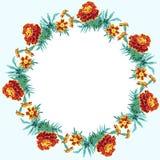 万寿菊开花围绕框架正方形 库存图片