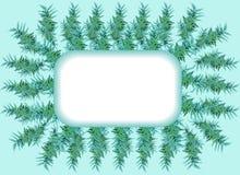 万寿菊离开绿色框架正方形 图库摄影