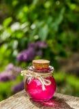 万灵药 3d饮料倾吐红色葡萄酒杯的重点爱 媚药 生活的魔药 魔药和魔术 魔药 图库摄影