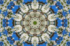 万花筒的花卉样式抽象背景  免版税图库摄影