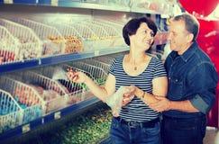 丈夫和妻子选择糖果 免版税库存照片