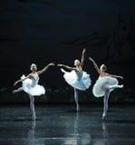 三一点天鹅舞蹈这天鹅湖边芭蕾天鹅湖 图库摄影