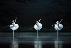 三一点天鹅舞蹈这天鹅湖边芭蕾天鹅湖 免版税库存图片